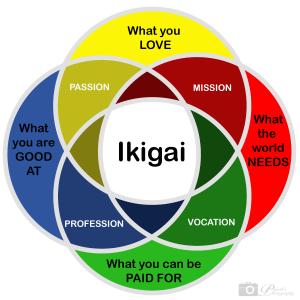 not ikigai